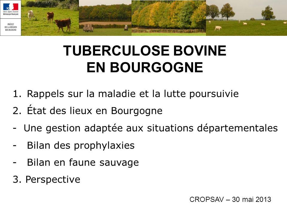 1.Rappels sur la maladie et la lutte poursuivie 2.État des lieux en Bourgogne - Une gestion adaptée aux situations départementales -Bilan des prophylaxies -Bilan en faune sauvage 3.