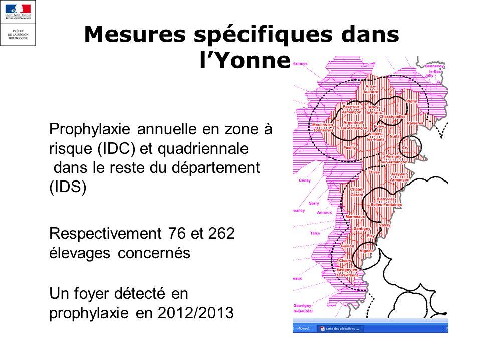 Mesures spécifiques dans lYonne Prophylaxie annuelle en zone à risque (IDC) et quadriennale dans le reste du département (IDS) Respectivement 76 et 262 élevages concernés Un foyer détecté en prophylaxie en 2012/2013