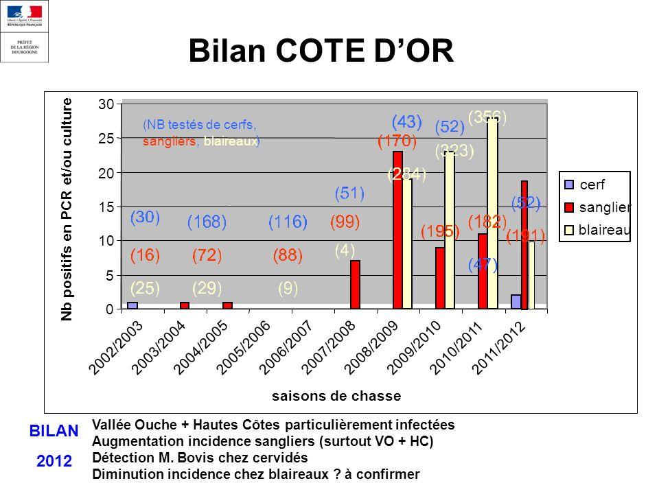 Bilan COTE DOR 0 5 10 15 20 25 30 2002/20032003/20042004/20052005/20062006/2007 2007/20082008/2009 2009/20102010/20112011/2012 saisons de chasse Nb positifs en PCR et/ou culture cerf sanglier blaireau (NB testés de cerfs, sangliers,blaireaux Vallée Ouche + Hautes Côtes particulièrement infectées Augmentation incidence sangliers (surtout VO + HC) Détection M.