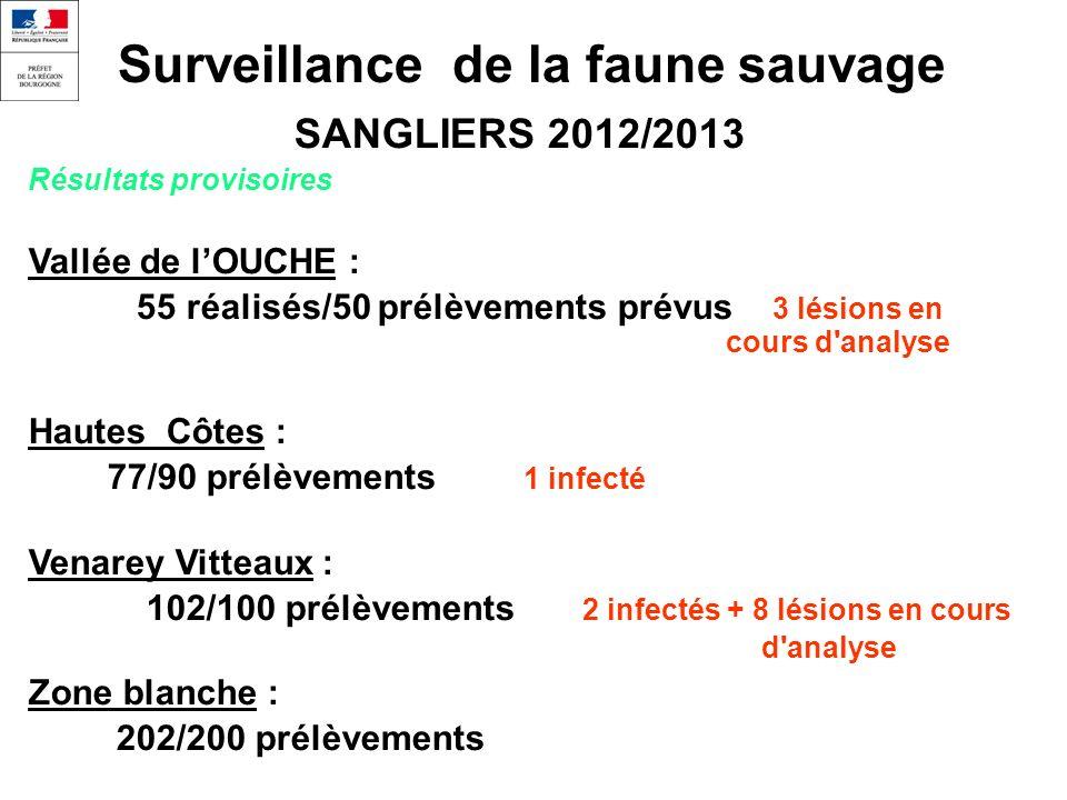 Surveillance de la faune sauvage SANGLIERS 2012/2013 Résultats provisoires Vallée de lOUCHE : 55 réalisés/50 prélèvements prévus 3 lésions en cours d analyse Hautes Côtes : 77/90 prélèvements 1 infecté Venarey Vitteaux : 102/100 prélèvements 2 infectés + 8 lésions en cours d analyse Zone blanche : 202/200 prélèvements