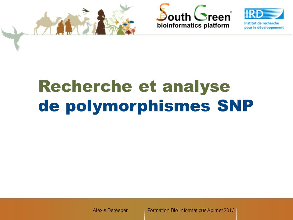Alexis DereeperFormation Bio-informatique Apimet 2013 Recherche et analyse de polymorphismes SNP