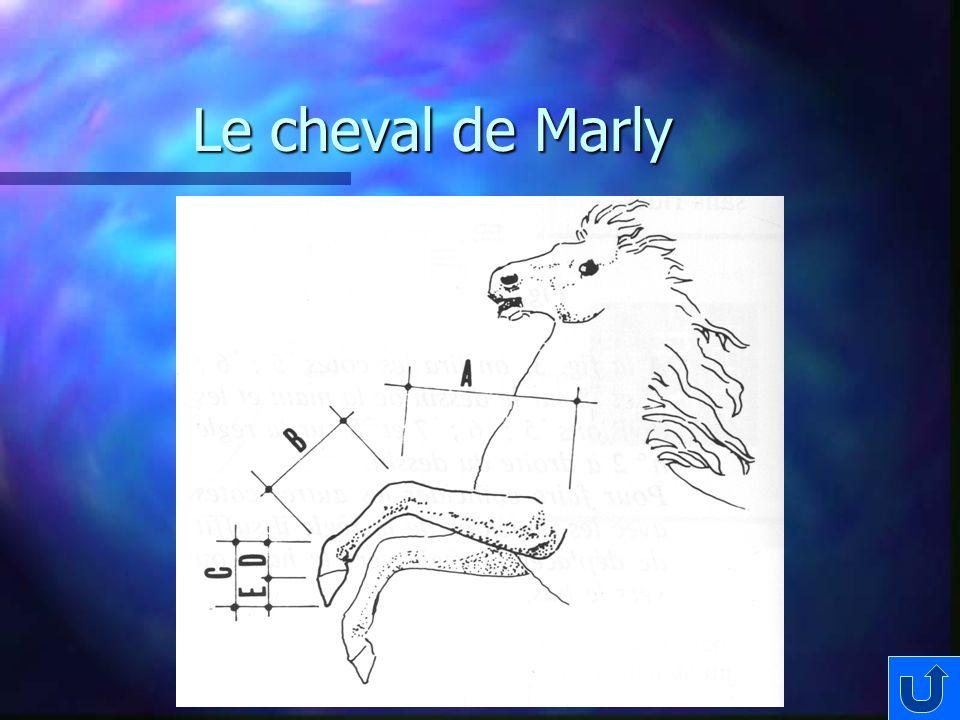 Le cheval de Marly