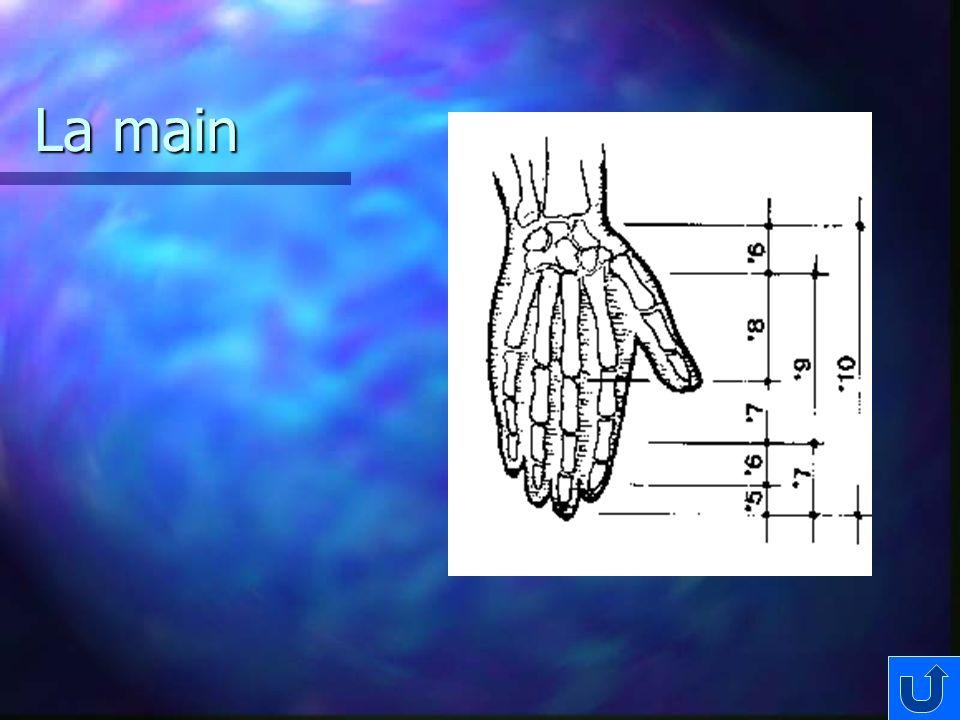 La main