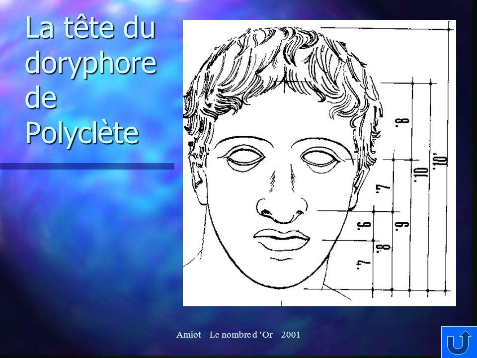 La tête du doryphore de Polyclète Amiot Le nombre d Or 2001