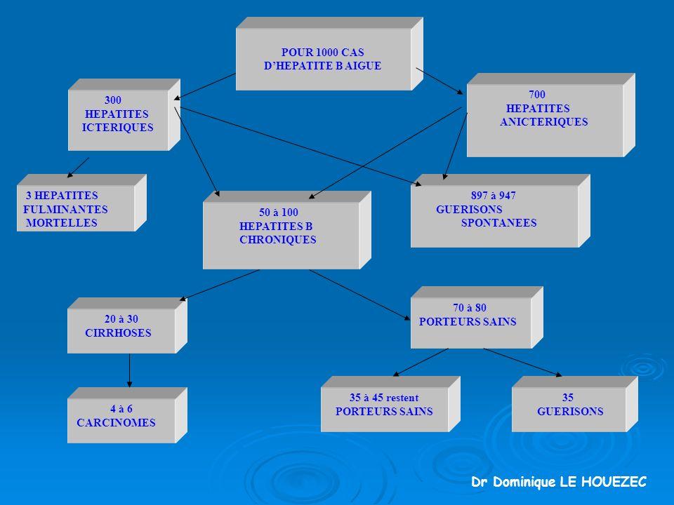 POUR 1000 CAS DHEPATITE B AIGUE 300 HEPATITES ICTERIQUES 700 HEPATITES ANICTERIQUES 3 HEPATITES FULMINANTES MORTELLES 897 à 947 GUERISONS SPONTANEES 50 à 100 HEPATITES B CHRONIQUES 20 à 30 CIRRHOSES 4 à 6 CARCINOMES 70 à 80 PORTEURS SAINS 35 GUERISONS 35 à 45 restent PORTEURS SAINS Dr Dominique LE HOUEZEC