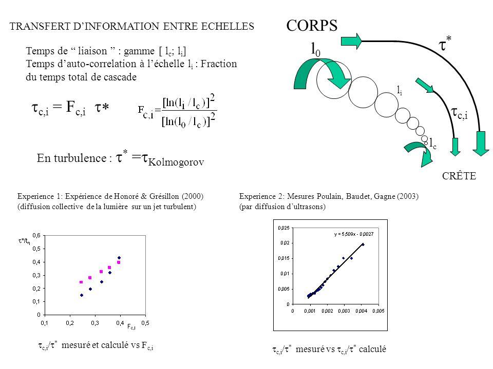 TRANSFERT DINFORMATION ENTRE ECHELLES Experience 1: Expérience de Honoré & Grésillon (2000) (diffusion collective de la lumière sur un jet turbulent)