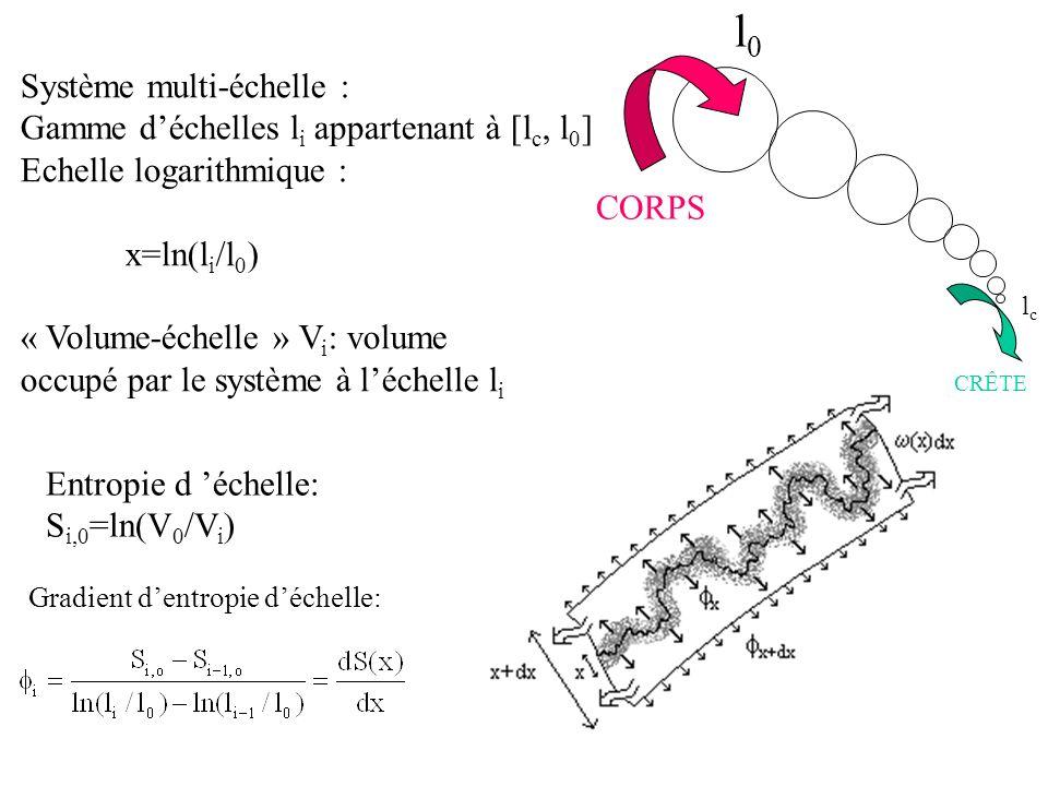 Système multi-échelle : Gamme déchelles l i appartenant à [l c, l 0 ] Echelle logarithmique : x=ln(l i /l 0 ) « Volume-échelle » V i : volume occupé p
