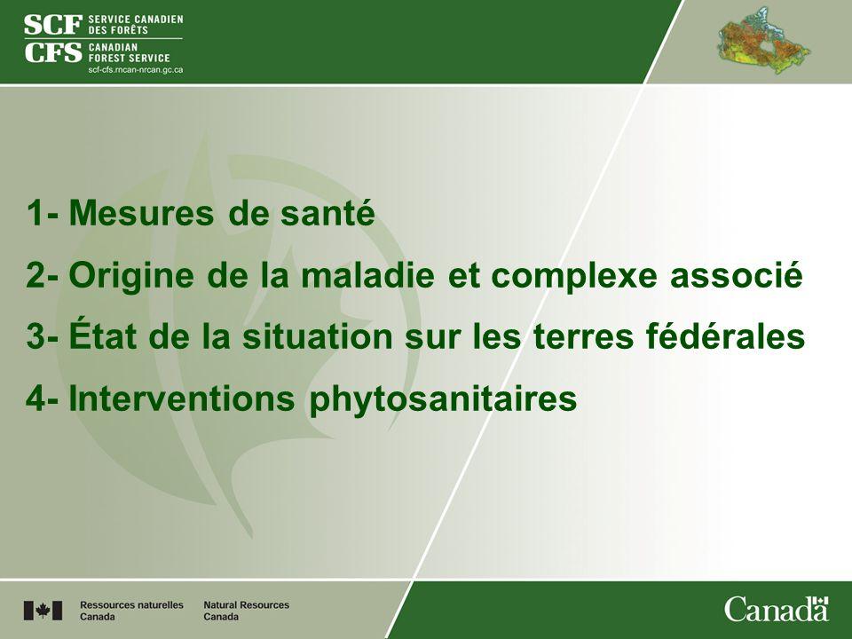 Interventions phytosanitaires 1- Favoriser la vigueur des noyers cendrés 2- Réduire les sources dinfection 3- Favoriser la sélection darbres résistants