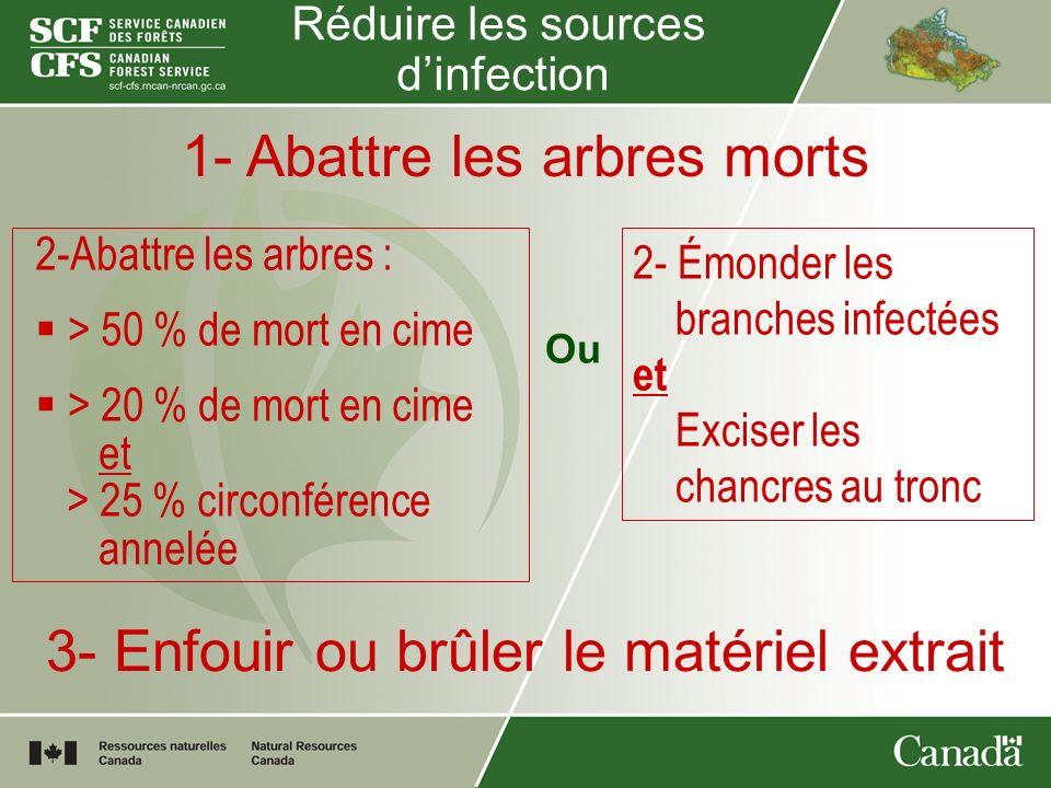 Réduire les sources dinfection 1- Abattre les arbres morts 2-Abattre les arbres : > 50 % de mort en cime > 20 % de mort en cime et > 25 % circonférenc