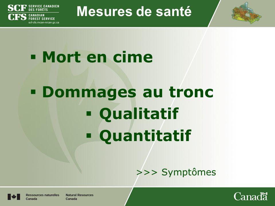 Mesures de santé Mort en cime Dommages au tronc Qualitatif Quantitatif >>> Symptômes