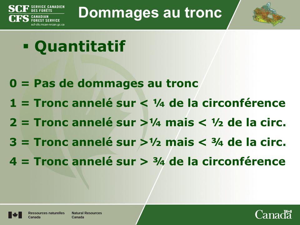 Quantitatif Dommages au tronc 0 = Pas de dommages au tronc 1 = Tronc annelé sur < ¼ de la circonférence 2 = Tronc annelé sur >¼ mais < ½ de la circ. 3