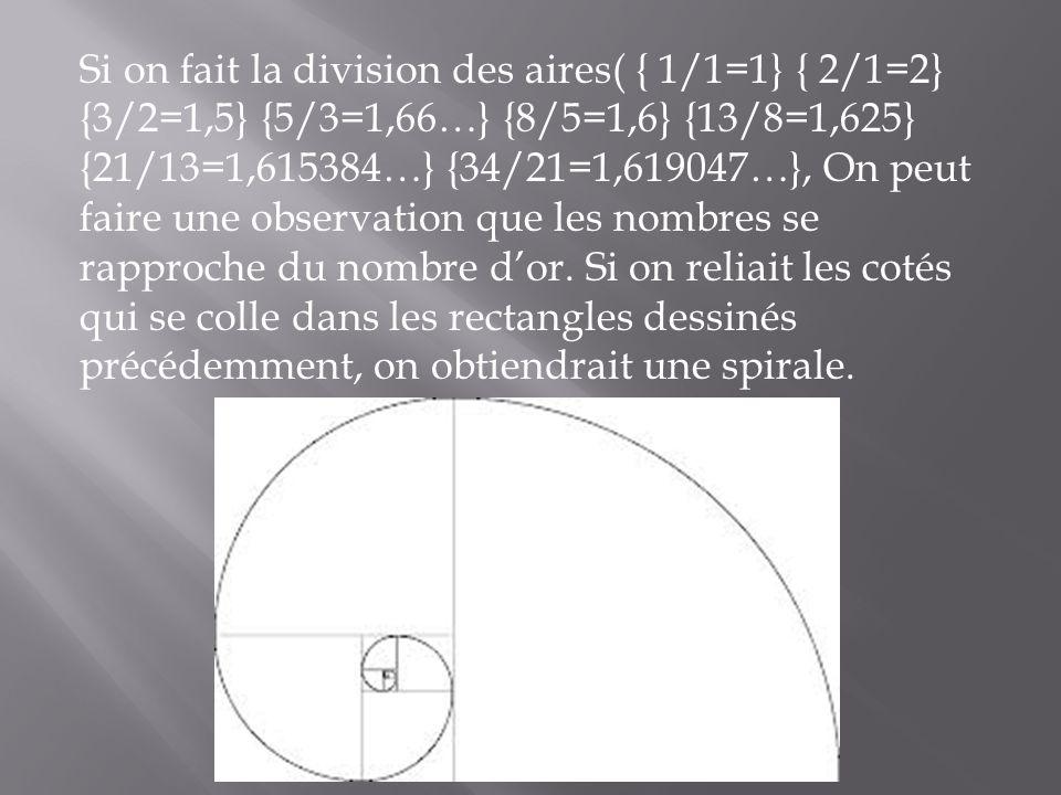 Si on fait la division des aires( { 1/1=1} { 2/1=2} {3/2=1,5} {5/3=1,66…} {8/5=1,6} {13/8=1,625} {21/13=1,615384…} {34/21=1,619047…}, On peut faire un