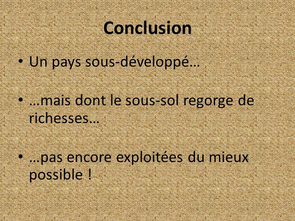 Conclusion Un pays sous-développé… …mais dont le sous-sol regorge de richesses… …pas encore exploitées du mieux possible !