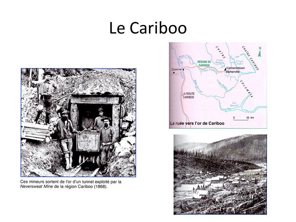 Le Cariboo