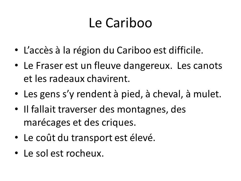 Laccès à la région du Cariboo est difficile. Le Fraser est un fleuve dangereux. Les canots et les radeaux chavirent. Les gens sy rendent à pied, à che