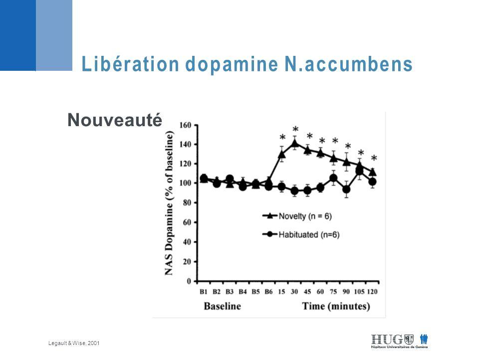Libération dopamine N.accumbens Nouveauté Legault & Wise, 2001