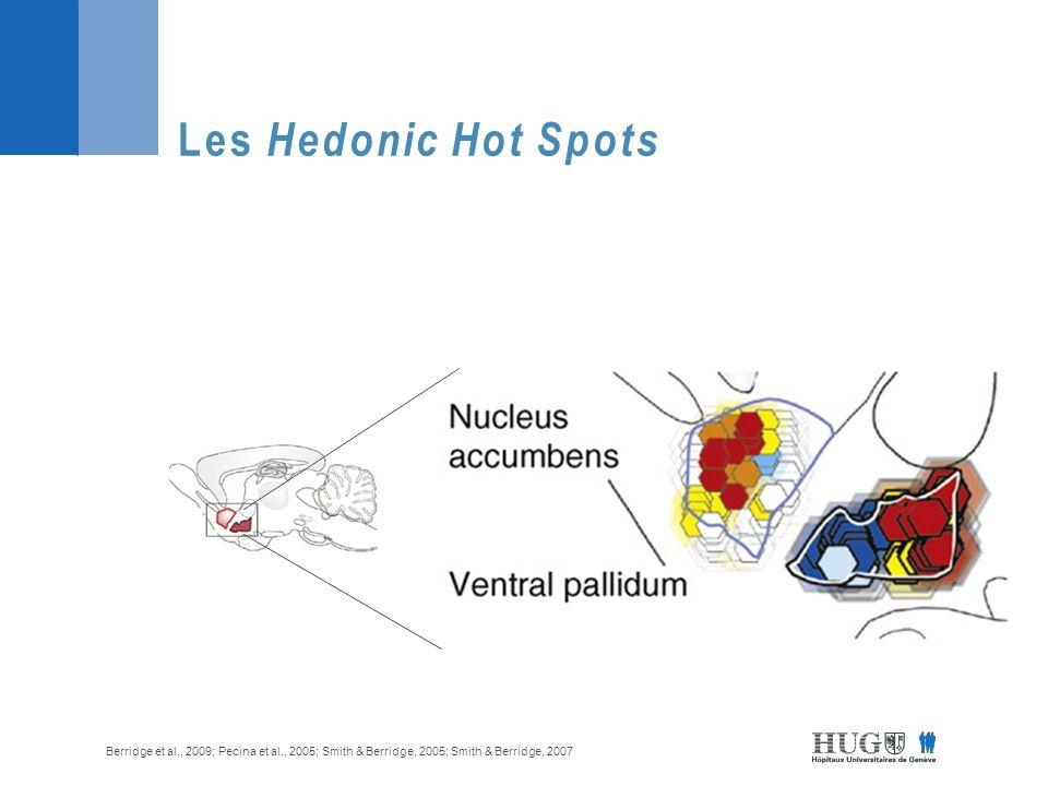 Zones hédoniques vs addictives Berridge et al., 2009; Pecina & Berridge, 2005