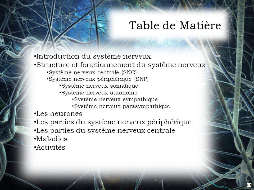E Introduction du système nerveux Structure et fonctionnement du système nerveux Système nerveux centrale (SNC) Système nerveux périphérique (SNP) Sys
