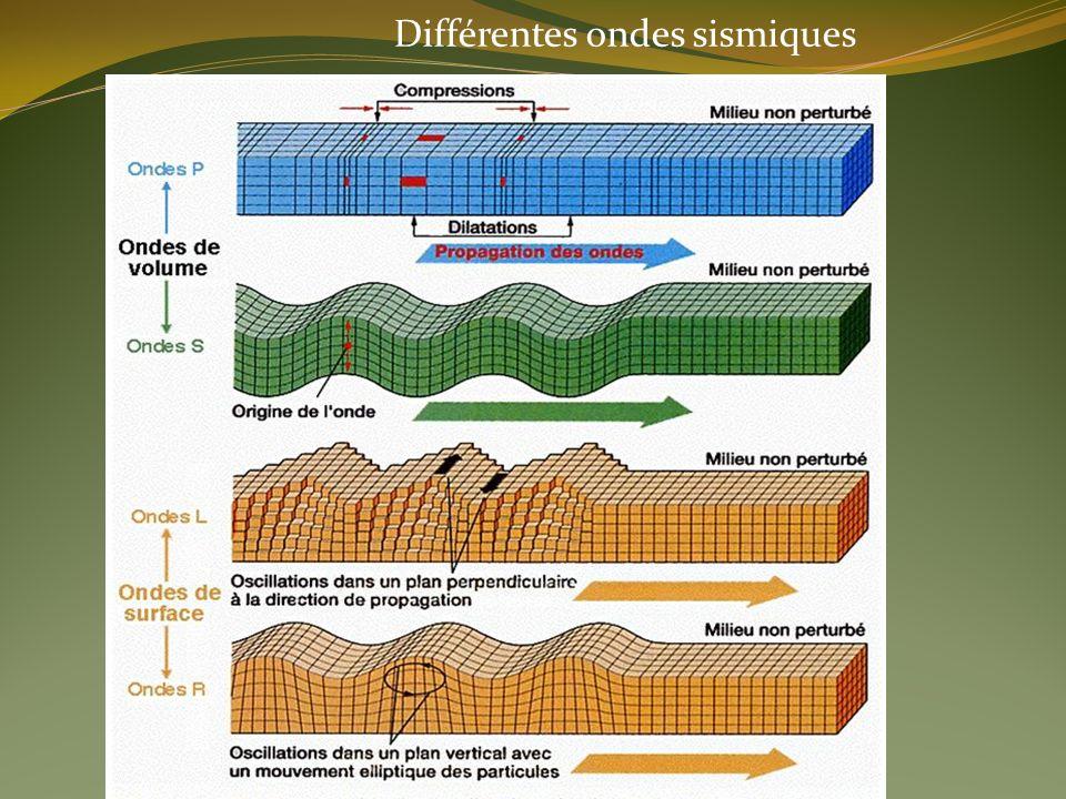 Différentes ondes sismiques