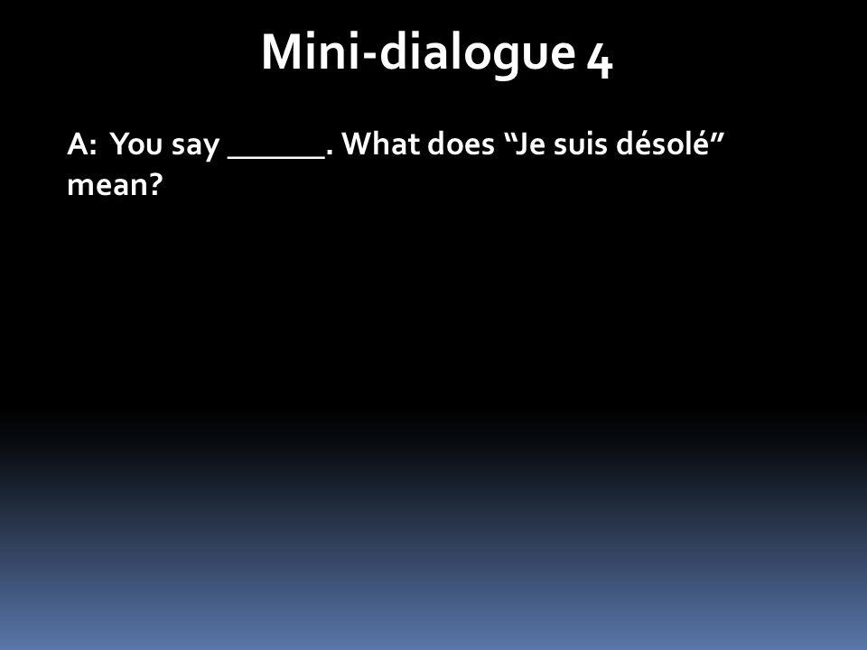 Mini-dialogue 4 A: You say ______. What does Je suis désolé mean?
