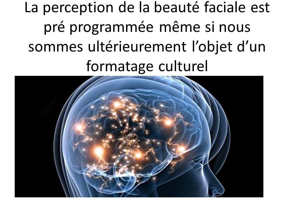 La perception de la beauté faciale est pré programmée même si nous sommes ultérieurement lobjet dun formatage culturel