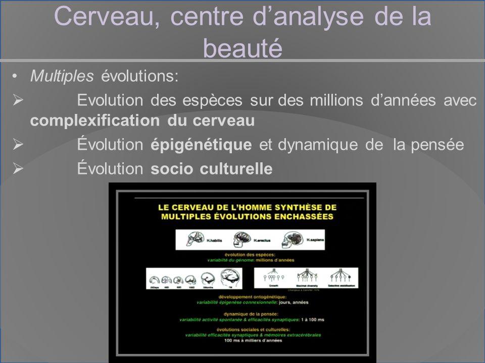 Cerveau, centre danalyse de la beauté Multiples évolutions: Evolution des espèces sur des millions dannées avec complexification du cerveau Évolution épigénétique et dynamique de la pensée Évolution socio culturelle