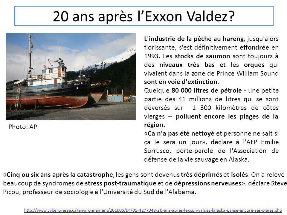 20 ans après lExxon Valdez? Photo: AP L'industrie de la pêche au hareng, jusqu'alors florissante, s'est définitivement effondrée en 1993. Les stocks d