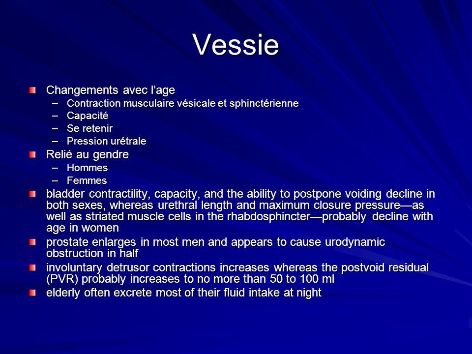 Vessie Changements avec lage –Contraction musculaire vésicale et sphinctérienne –Capacité –Se retenir –Pression urétrale Relié au gendre –Hommes –Femm