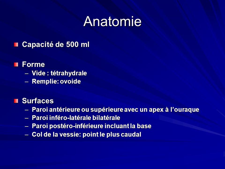 Anatomie Capacité de 500 ml Forme –Vide : tétrahydrale –Remplie: ovoide Surfaces –Paroi antérieure ou supérieure avec un apex à louraque –Paroi inféro