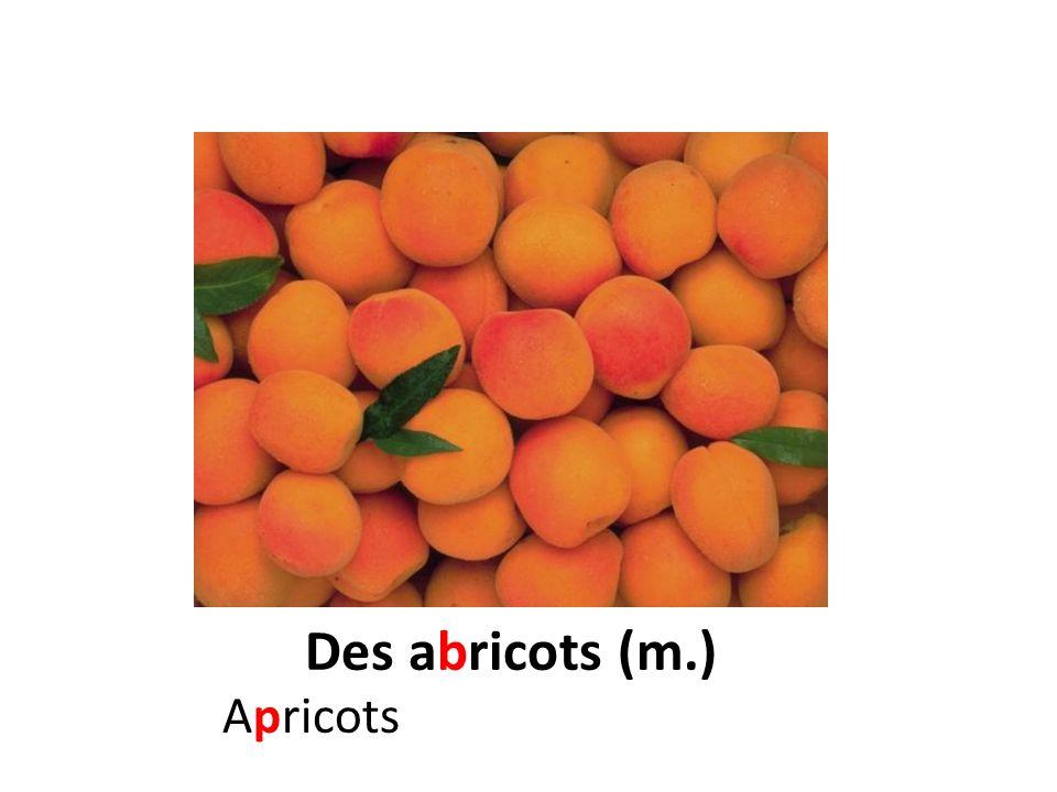 Des abricots (m.) Apricots
