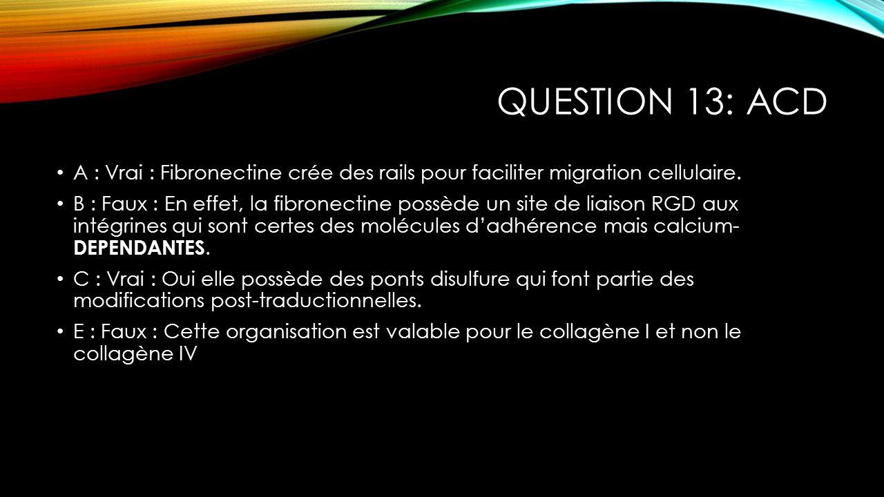QUESTION 13: ACD A : Vrai : Fibronectine crée des rails pour faciliter migration cellulaire. B : Faux : En effet, la fibronectine possède un site de l