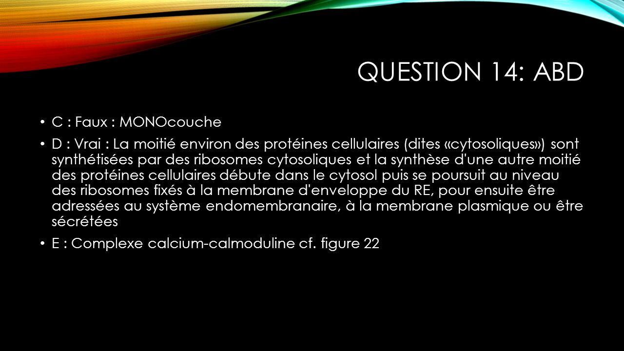 QUESTION 14: ABD C : Faux : MONOcouche D : Vrai : La moitié environ des protéines cellulaires (dites «cytosoliques») sont synthétisées par des ribosom