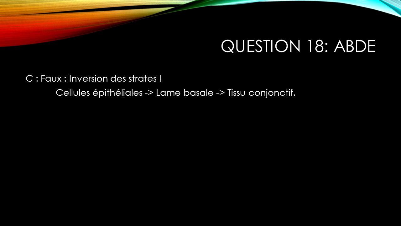 QUESTION 18: ABDE C : Faux : Inversion des strates ! Cellules épithéliales -> Lame basale -> Tissu conjonctif.