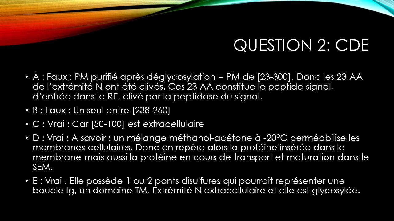 QUESTION 2: CDE A : Faux : PM purifié après déglycosylation = PM de [23-300]. Donc les 23 AA de lextrémité N ont été clivés. Ces 23 AA constitue le pe