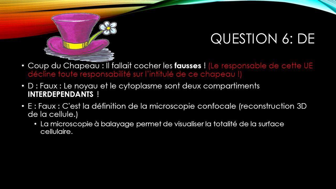 QUESTION 6: DE Coup du Chapeau : Il fallait cocher les fausses ! (Le responsable de cette UE décline toute responsabilité sur lintitulé de ce chapeau