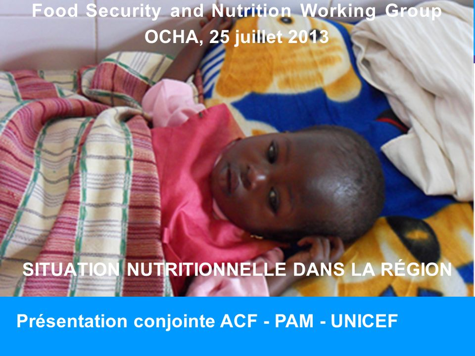 SITUATION NUTRITIONNELLE DANS LA RÉGION 1 Food Security and Nutrition Working Group OCHA, 25 juillet 2013 Présentation conjointe ACF - PAM - UNICEF