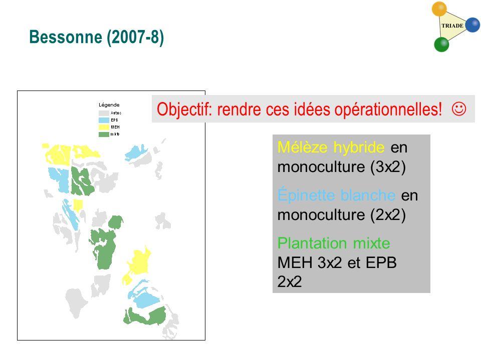 Bessonne (2007-8) Mélèze hybride en monoculture (3x2) Épinette blanche en monoculture (2x2) Plantation mixte MEH 3x2 et EPB 2x2 Objectif: rendre ces i