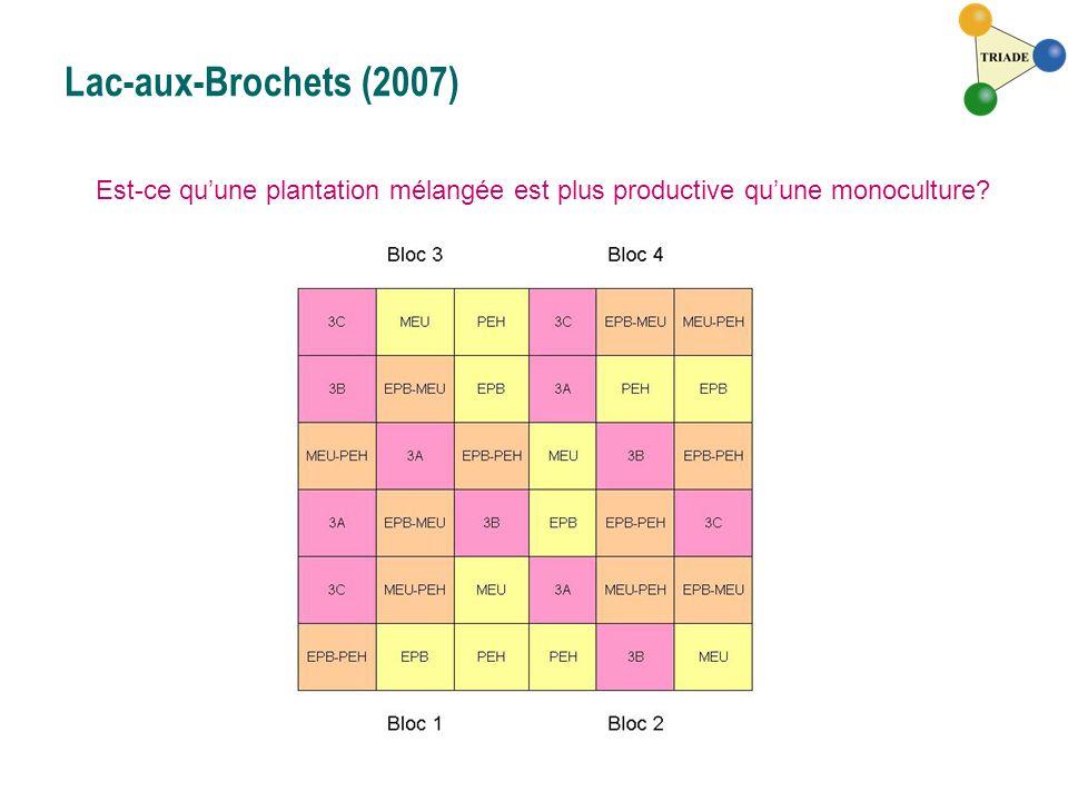 Lac-aux-Brochets (2007) Est-ce quune plantation mélangée est plus productive quune monoculture?