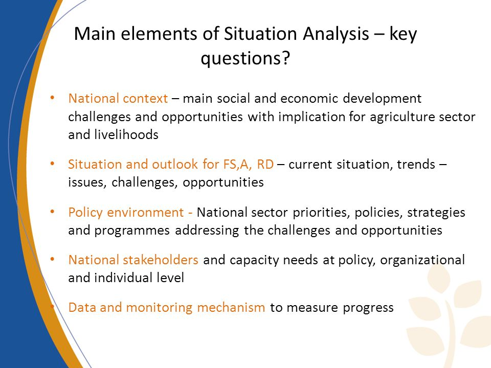 Main elements of Situation Analysis – key questions.