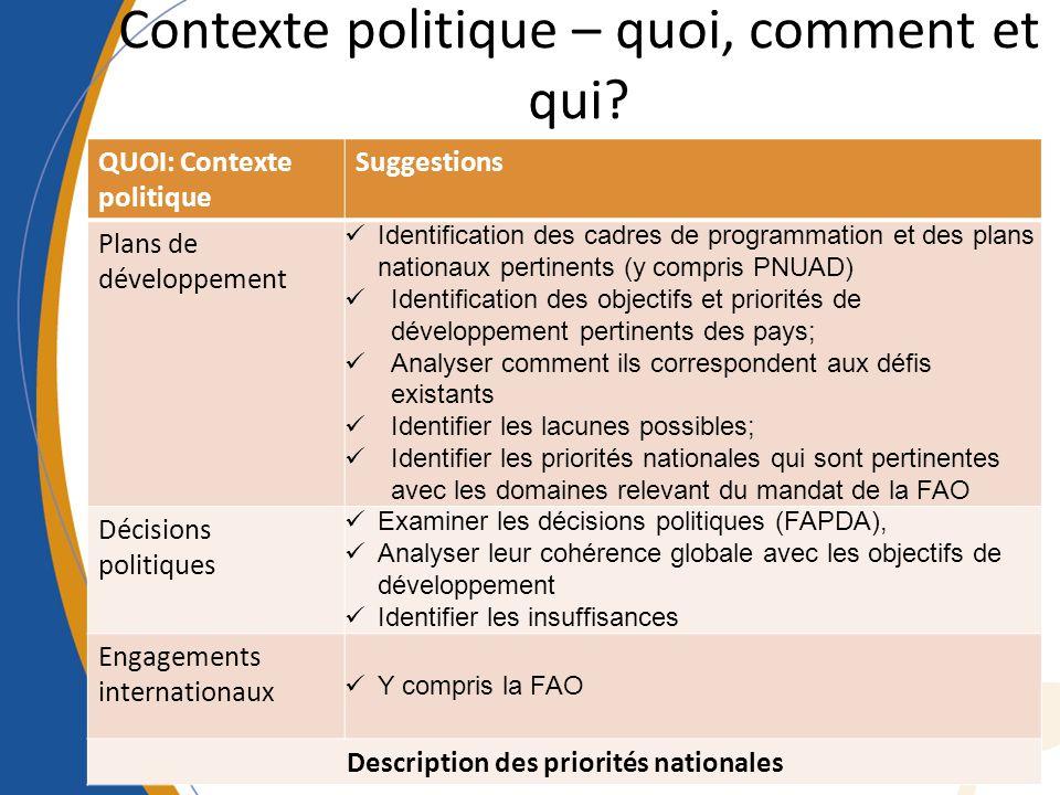 Contexte politique – quoi, comment et qui? QUOI: Contexte politique Suggestions Plans de développement Identification des cadres de programmation et d