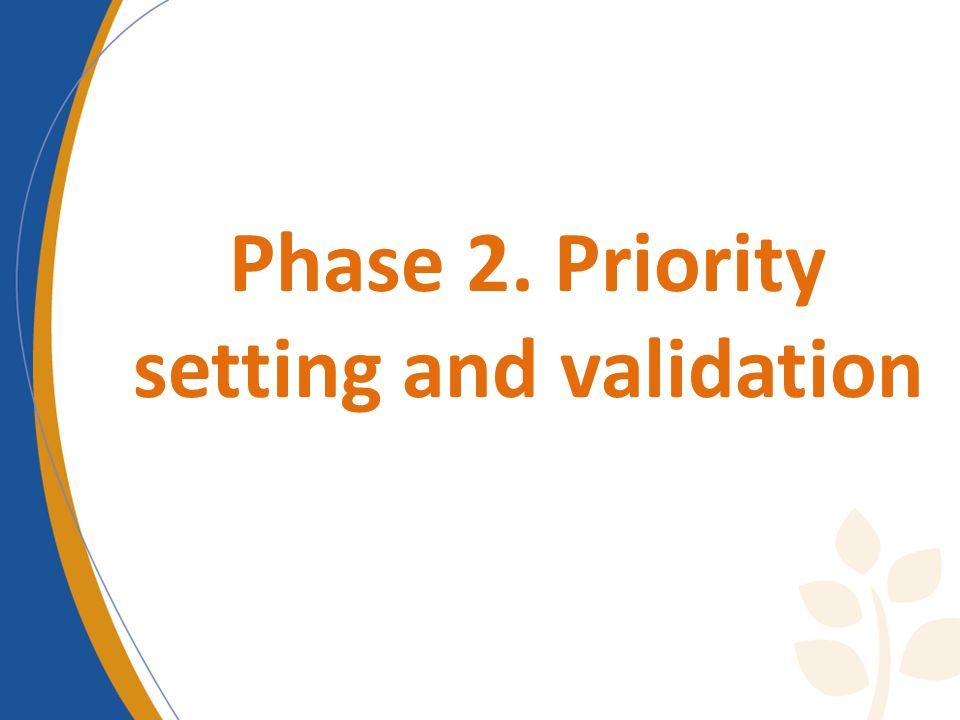 Phase 2. Priority setting and validation