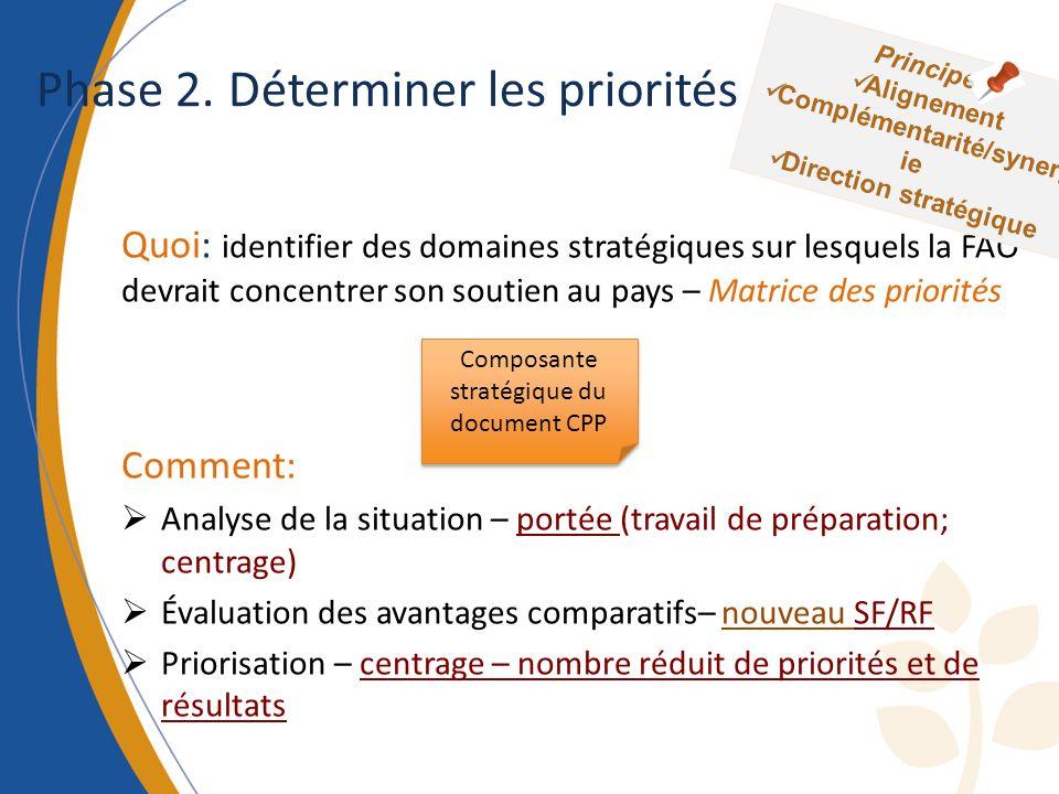 Phase 2. Déterminer les priorités Quoi: identifier des domaines stratégiques sur lesquels la FAO devrait concentrer son soutien au pays – Matrice des