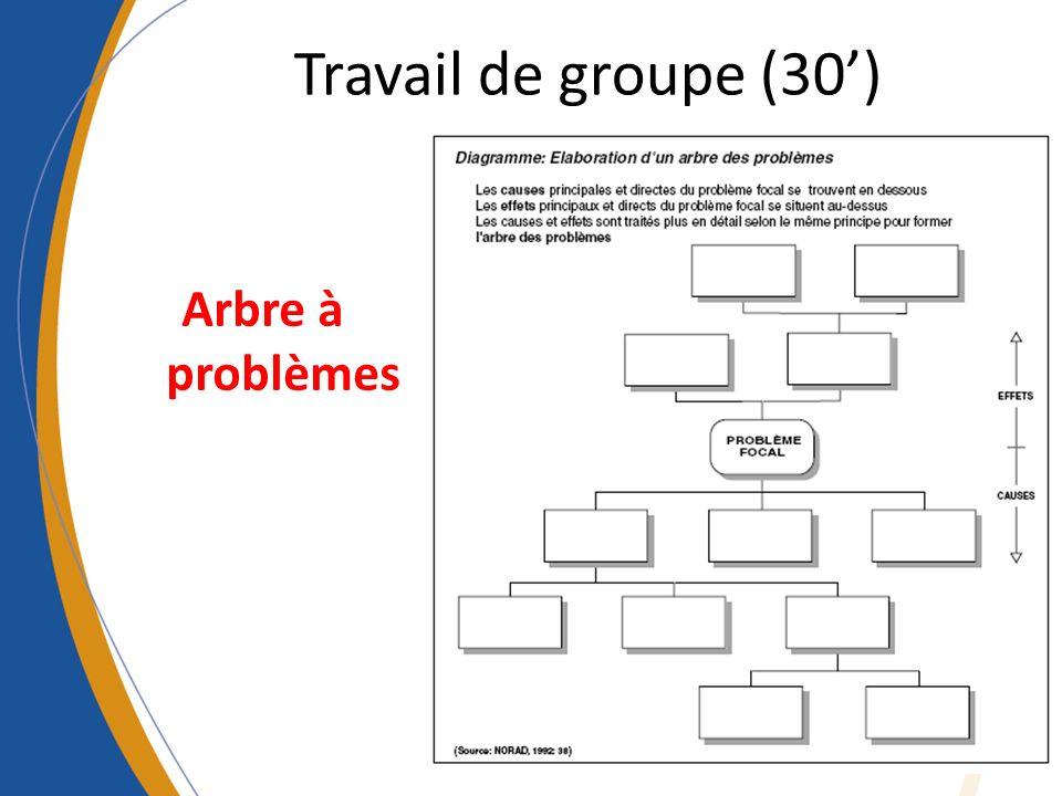 Travail de groupe (30) Arbre à problèmes