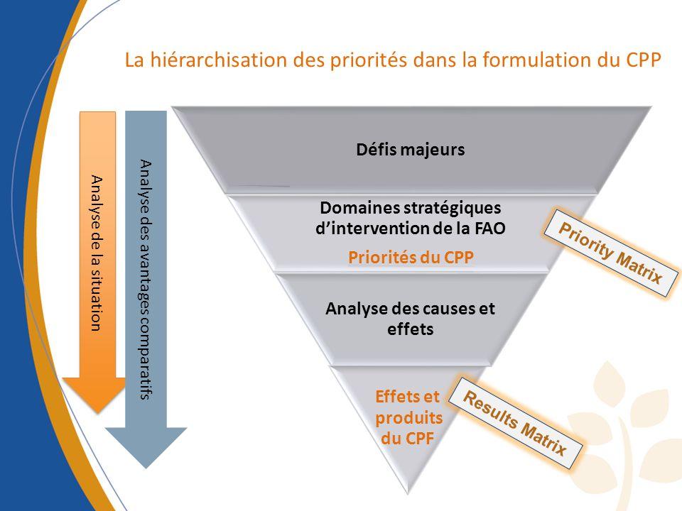… identification of CHALLENGES (WHAT, HOW and WHO) Défis majeurs Domaines stratégiques dintervention de la FAO Priorités du CPP Analyse des causes et effets Effets et produits du CPF