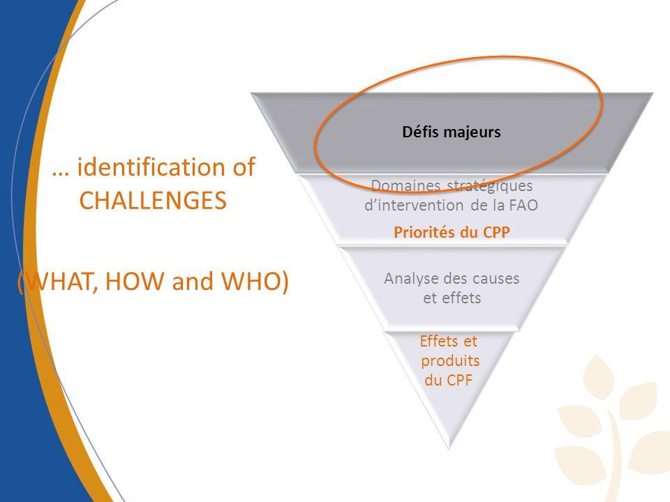 … identification of CHALLENGES (WHAT, HOW and WHO) Défis majeurs Domaines stratégiques dintervention de la FAO Priorités du CPP Analyse des causes et