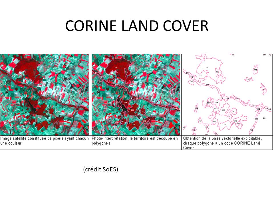 CORINE LAND COVER (crédit SoES)