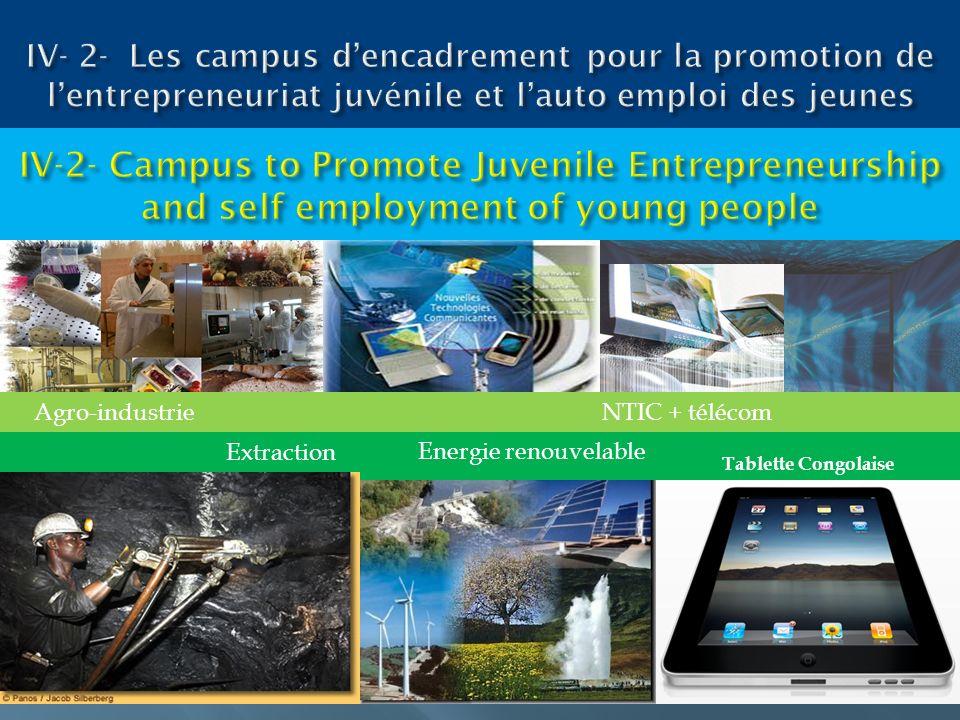 Tablette Congolaise Agro-industrieNTIC + télécom Energie renouvelable Extraction