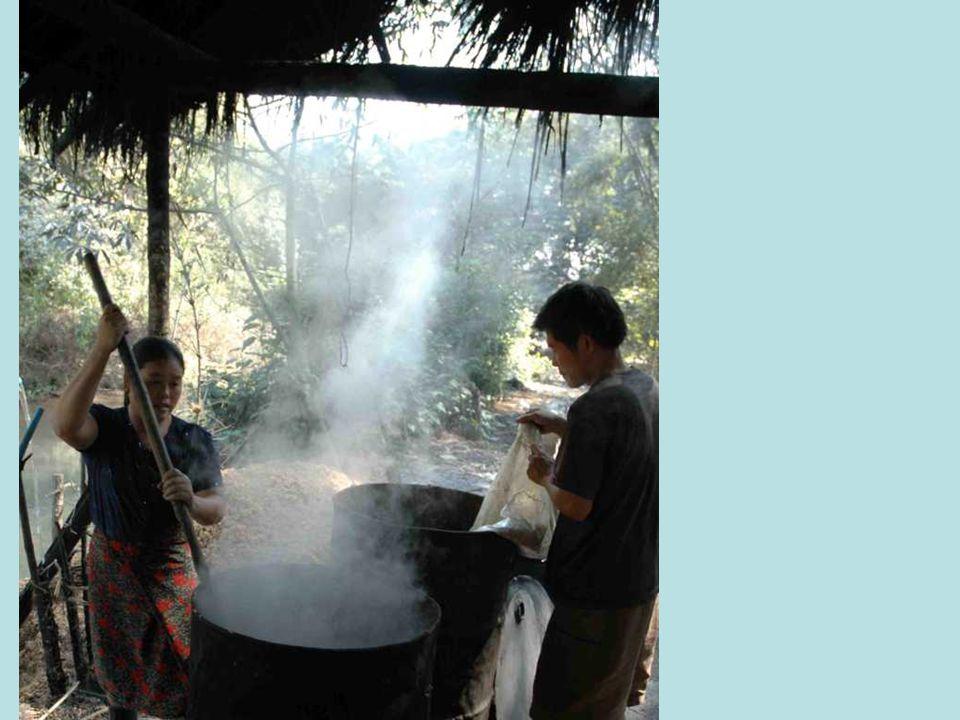 En route, une fabrique artisanale de distillation dalcool de riz….. Nous lavons goûté, surpris par son arôme et sa qualité!