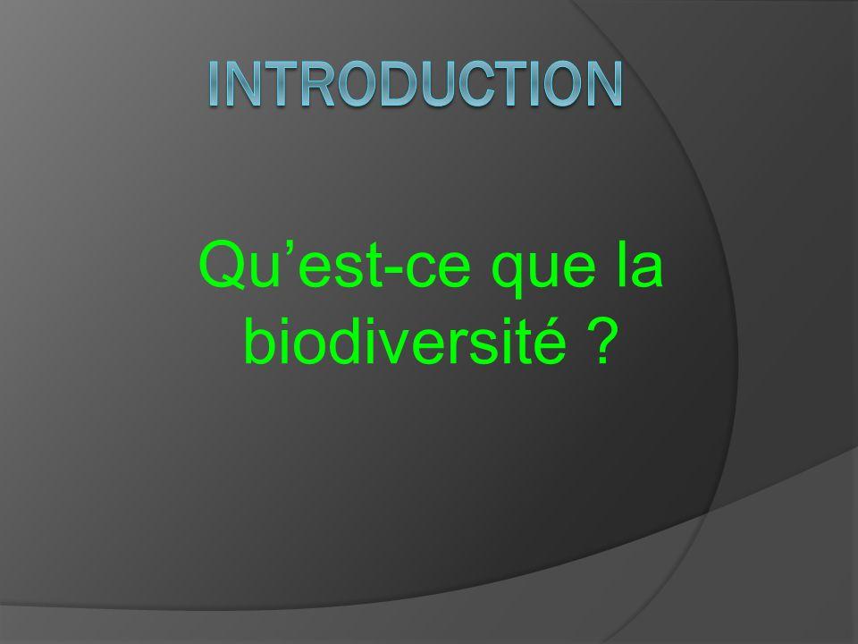 Quest-ce que la biodiversité ?