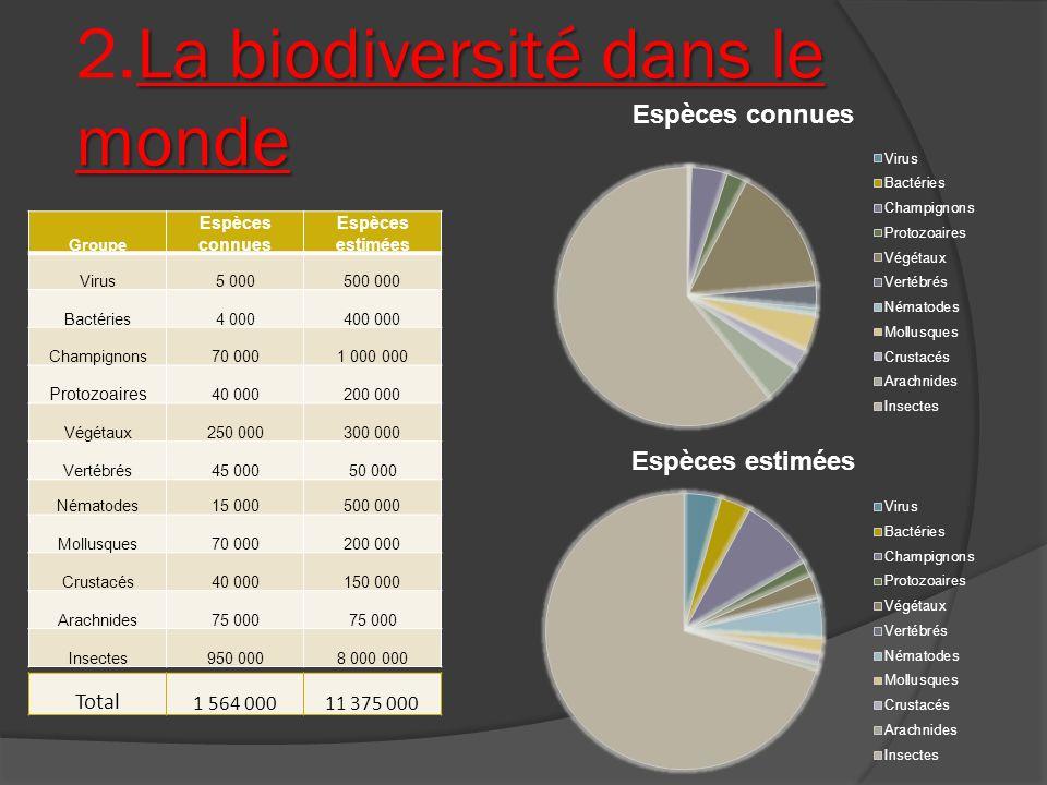 La biodiversité dans le monde 2.La biodiversité dans le monde Groupe Espèces connues Espèces estimées Virus5 000500 000 Bactéries4 000400 000 Champign